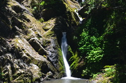 Kohuroa Stream Waterfalls