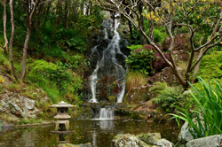Wellington Botanic Garden Waterfall